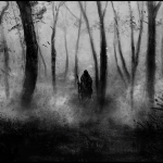 dark_forest_by_narcotic_nightmares-d6g6fgr-150x150 سهام عدالت