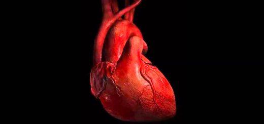 راه های طبیعی درمان تپش قلب